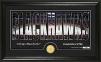 Chicago Blackhawks Silhouette Bronze Coin Panoramic Photo Mint