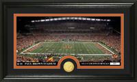 Cincinnati Bengals Stadium Bronze Coin Panoramic Photo Mint
