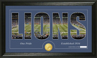 Detroit Lions Silhouette Bronze Coin Panoramic Photo Mint