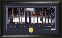 Florida Panthers Silhouette Bronze Coin Panoramic Photo Mint