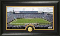 Jacksonville Jaguars Stadium Bronze Coin Panoramic Photo Mint
