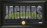 Jacksonville Jaguars Silhouette Bronze Coin Panoramic Photo Mint