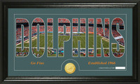 Miami Dolphins Silhouette Bronze Coin Panoramic Photo Mint