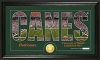 University of Miami Silhouette Bronze Coin Panoramic Photo Mint