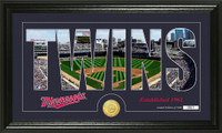 Minnesota Twins Silhouette Bronze Coin Panoramic Photo Mint