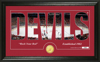New Jersey Devils Silhouette Bronze Coin Panoramic Photo Mint