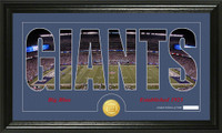 New York Giants Silhouette Bronze Coin Panoramic Photo Mint