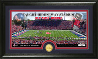 University of Mississippi  Stadium Bronze Coin Panoramic Photo Mint