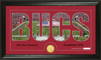 Tampa Bay Buccaneers Silhouette Bronze Coin Panoramic Photo Mint