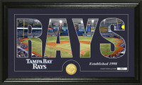 Tampa Bay Rays Silhouette Bronze Coin Panoramic Photo Mint