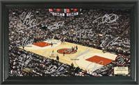 Toronto Raptors Signature Court