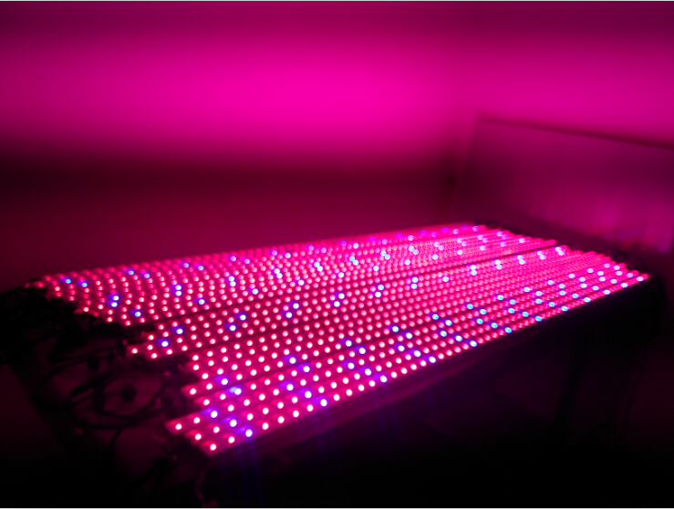 VANQ 30W Waterproof Grow Light Tube Array Singapore;Horizon-lights