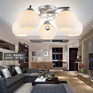Modern LED Chandelier Light Glass Lampshade Living room Decoration