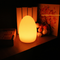 This is the scene picture. LED Table Lamp Egg Shape Modern Style from Singapore best online lighting shop horizon lights