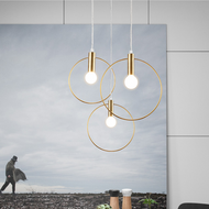 Modern Minimalism LED Pendant Light Single Circle Meatl Frame Light Home Decor from Singapore best online lighting shop horizon lights