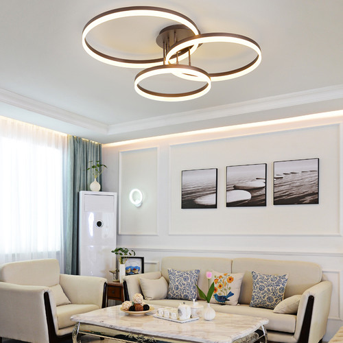 LED Ceiling Light Circles Acrylic Shade Modern Style Free sea shipping from Singapore best online lighting shop horizon lights