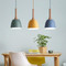 LED Nature and Fun Pendant Light with Wood Metal Lampshade Modern Style from Singapore best online lighting shop horizon lights A-type