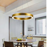 LED Pendant Light Gold Circle Metal Shade Modern Style Restaurants Shopping Mall Decor from Singapore best online lighting shop horizon lights