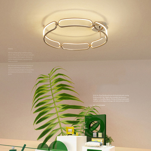 Modern LED Ceiling Light Creative Aluminum Ring Living Room Bedroom from Singapore best online lighting shop horizon lights