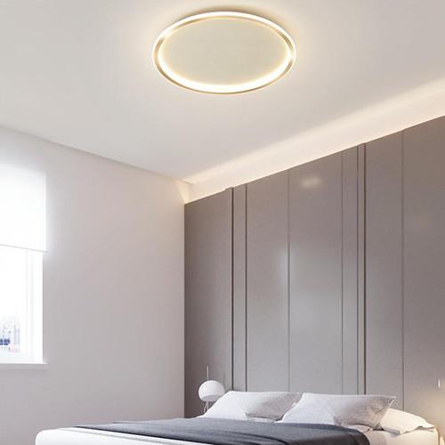 Golden Aluminum PMMA Annulus Ceiling Light for Modern and Minimaliam