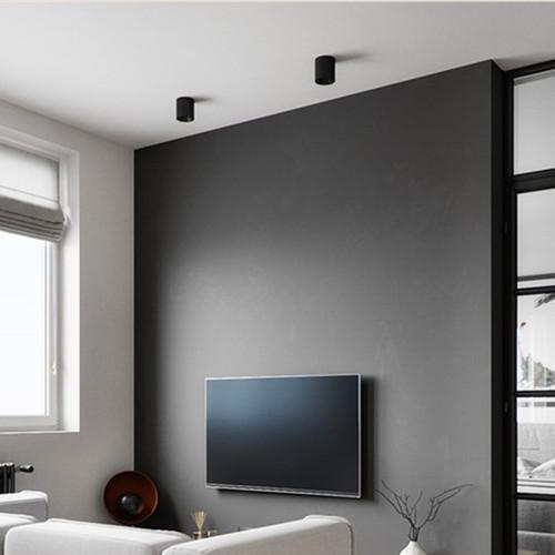 Modern LED Spot Light 2PCS Aluminum Cylinder Simple Corridor Living Room from Singapore best online lighting shop horizon lights