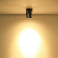 This is the scene picture. Modern LED Spot Light Retro Aluminum Simple Corridor Shops Bedroom from Singapore best online lighting shop horizon lights