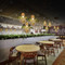 Modern LED Pendant Light Glass Shade Wood Plant Coffee Bar Dining Room Decor from Singapore best online lighting shop horizon lights