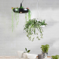 Modern LED Pendant Light Aluminum Simple Artificial Plant Restaurants Balcony Decor from Singapore best online lighting shop horizon lights