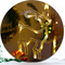 Christmas reindeer LED fairy lights for Christmas Party Decorations (logo)