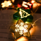 The Star from Christmas Tree string LED Fairy Lights for Christmas Decorations (2 star)