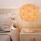 Modern LED Table Lamp 2PCS Acrylic Petals Shape Wood Creative Bedroom from Singapore best online lighting shop horizon lights