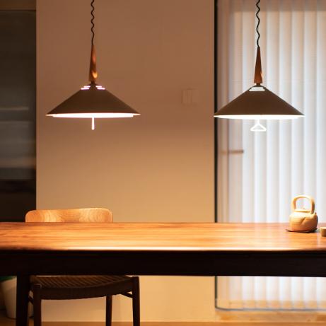 Modern LED Pendant Light Metal Customizable Adjustable Height Bar Dining Room from Singapore best online lighting shop horizon lights