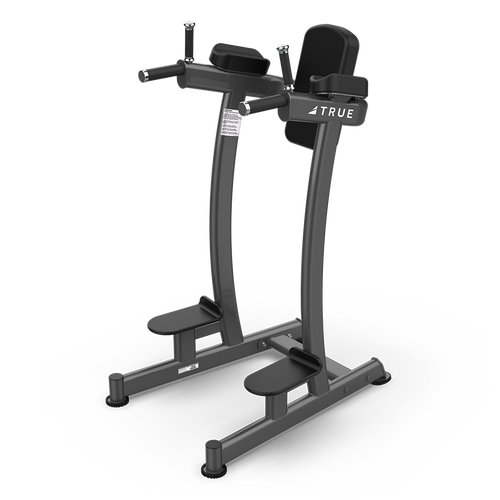 True Fitness XFW-6400 Vertical Knee Raise/Dip