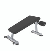 True Fitness Abdominal Crunch Bench