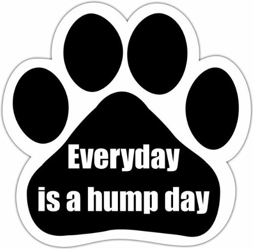Everyday is hump day Paw Print Magnet