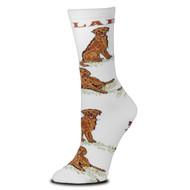 Chocolate LabMedium White Socks