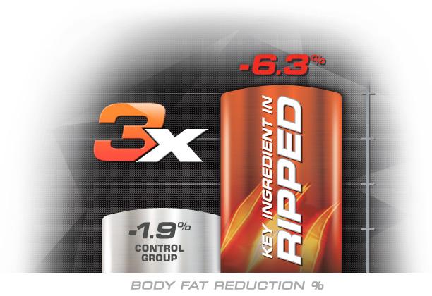 Ripped Protein Powder Key Ingredient