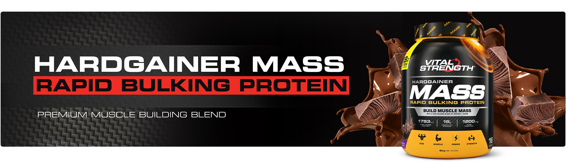 Mass Gainer Protein Powder