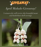 April Give Away