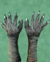 Killer Wolf Werewolf Grey Black Gloves Monster Arms Hands Halloween Costume Accessories