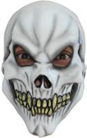 Kids Child's Skull Skeleton Halloween Costume Mask