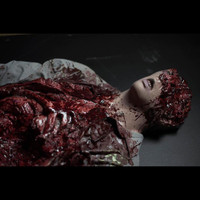 Life Size Static Leftovers Gory Bloody Torso Distortions Halloween Prop