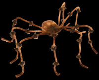 "Plush 90"" Brown Spider Furry Leg Joints Creepy Halloween Prop Decoration"