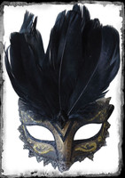 Victorian Carnival Feather Masquerade Ball Halloween Costume Black Face Mask
