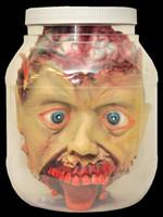 Life Size Severed Head in Jar Halloween Laboratory Prop Decoration Decor