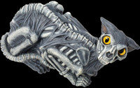 "Life Size 20"" Zombie Skinned Cat Skeleton Halloween Prop Decoration Decor"