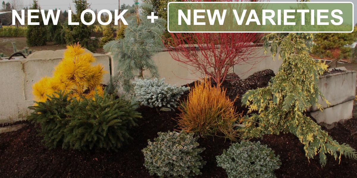 New Varieties