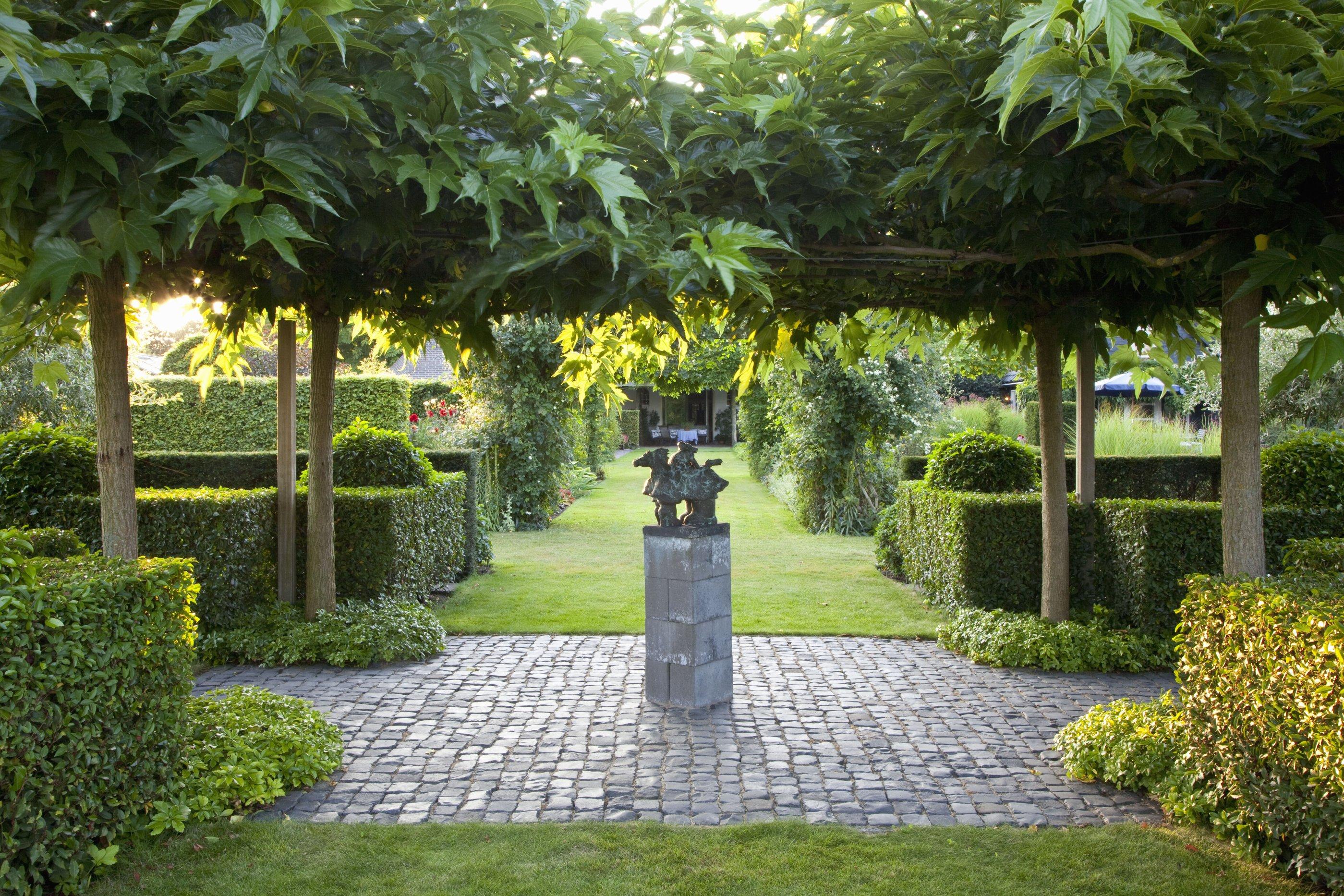28619-prunus-lusitanica-portuguese-laurel-hedge-modern-garden.jpg