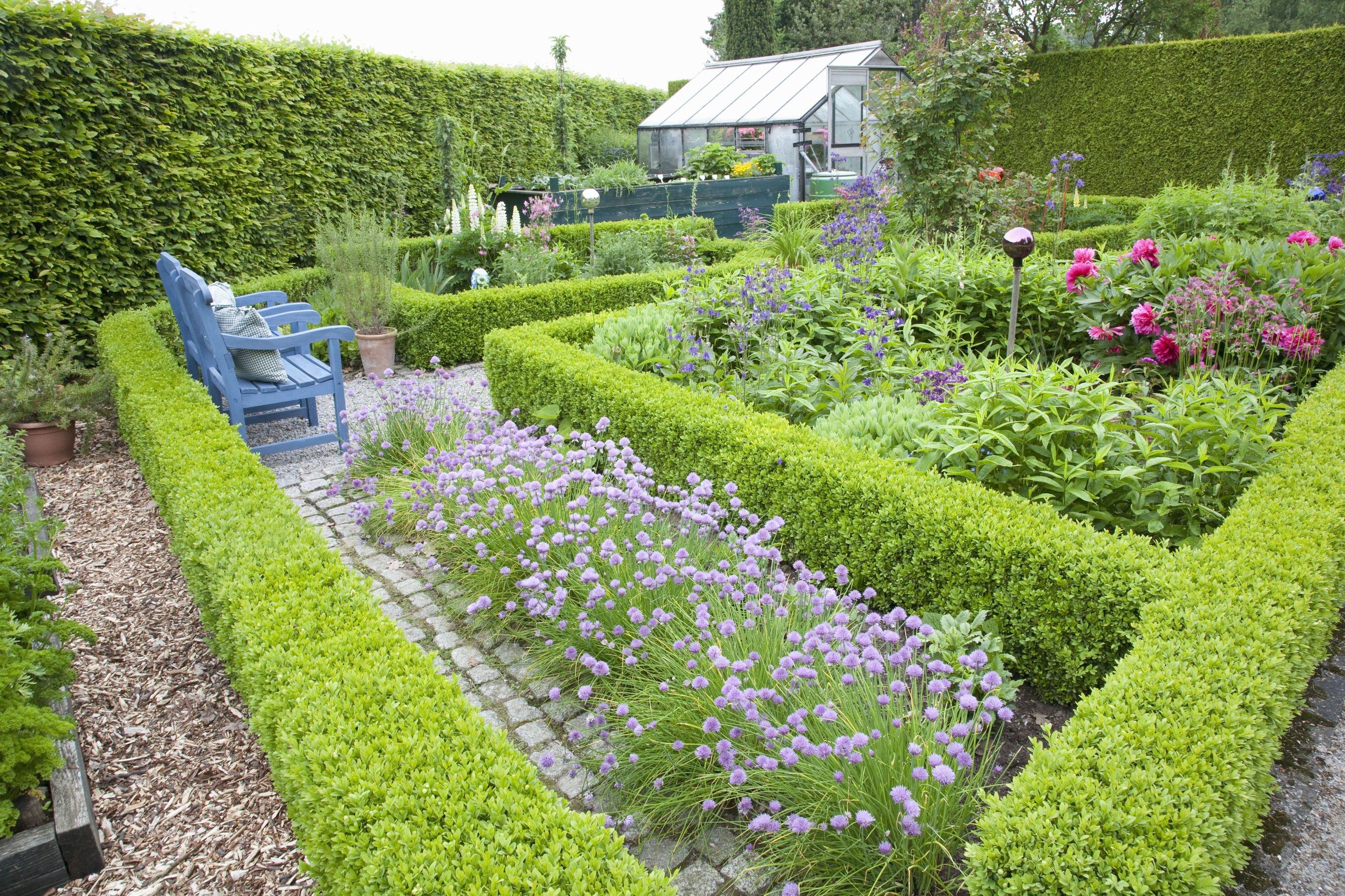 38516-fagus-beech-boxwood-buxus-hedge-country-knot-garden.jpg