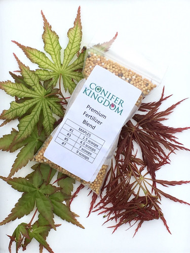 Conifer Kingdom Maple Fertilizer Blend